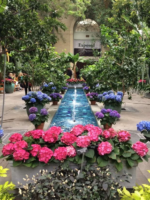 Washington D.C., Botanical Gardens